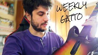 Weekly Gatto - Una Settimana Pienissima!