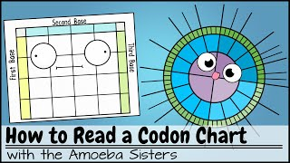 How to Read a Codon Chart