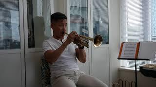Brasscellar Heritage Line BC6 - Vince Mai