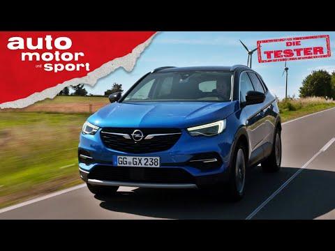 Opel Grandland X: Ein echter Opel? - Test/Review | auto motor und sport