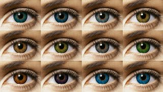 Freshlook Colorblends All 12 Colors Contact Lens Review