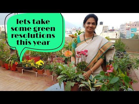 New year's gardening resolutions./ఈ సంవత్సరం  మనం  తీసుకోవలసిన  నిర్ణయాలు.