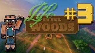 preview picture of video '[ITA] Minecraft Life in the Woods ep. 3, Preparativi ed Equipaggiamento!'