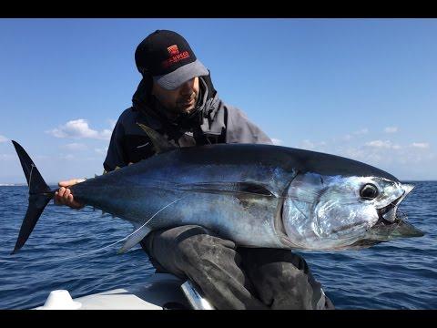 Peso di massimo del Mare Rosso da pesca russo