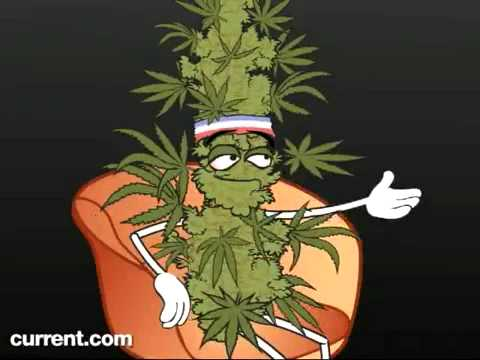 Marijuana VS. Crystal Meth - Funny but true video