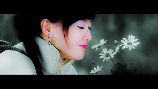 Ideal Lover ❁ Legend of Fragrance MV