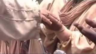 تحميل اغاني أباذر الحلواجي (علي حيدر إمامي) MP3