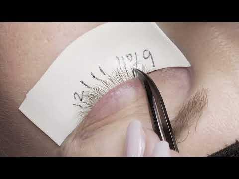 Combien le pénis peut-il être agrandi