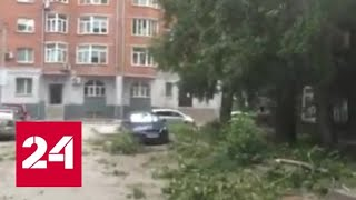 В Новосибирске ветер валил деревья, переворачивал остановки и срывал крыши - Россия 24