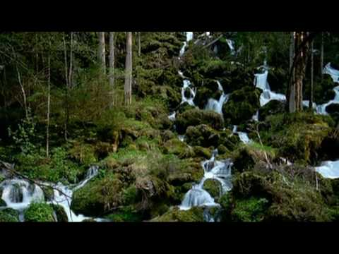 Brains & Pictures CAM35TL - Timelapse - Nature