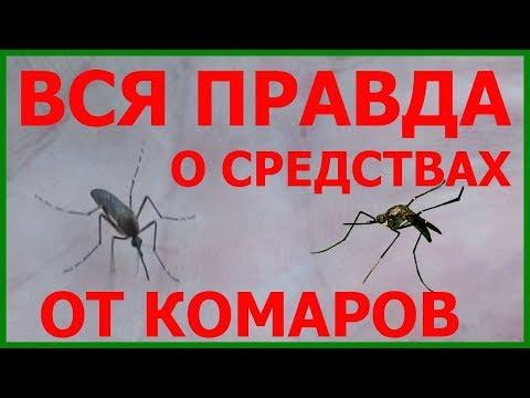 Лучшее средство от комаров на природе - как выбрать? Лучшие средства от комаров в лесу