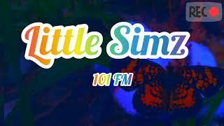Little Simz   101 FM