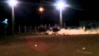 Leggs n Ace cowboy race!!