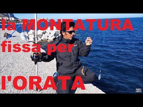 La pesca di video come legare cose notevoli davanti