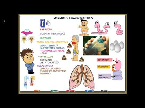 Cancer pulmonar auge