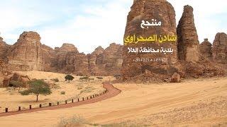preview picture of video 'العلا منتجع شادن الصحراوي'