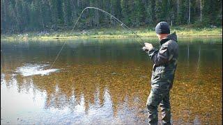 В ТАЙГУ НА НЕДЕЛЮ (второй день). Рыбалка на таёжной реке. Изба с медвежьими следами.