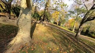 Fpv drone freestyle #fpv #dji #djifpv #fpvdrone #freestyle #pilot #youtube #deutschland