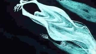 Bauhaus , Exquisite Corpse  =;-)