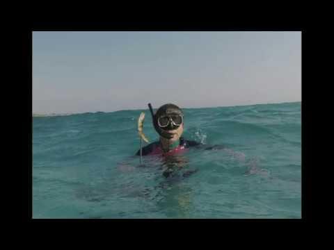 Nitesun DIV11 Diving Flashlight 1050 Lumens Review