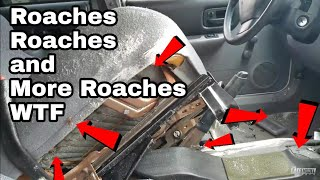I Bought a Car thats INFESTED With Roaches 1998 Jeep Cherokee Xj Part 1