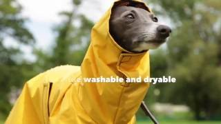 Our Best Rated Warm, Dry Dog Rain Coat | DogCoats.com