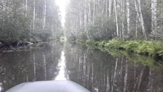 Отдых и рыбалка на озеро московская область тростенское