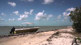 Tom Rosenbauer & Belize Fly Fishing | Orvis Endorsed Lodge
