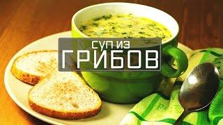 Грибной суп. Суп из грибов