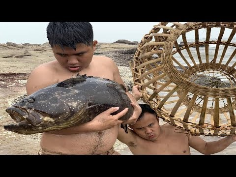 Primitive Technology with Survival Skills Giant fish trap in the wild beach (looking for food)