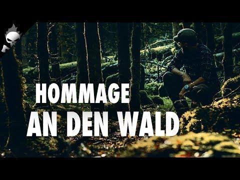 NATURFILM – Hommage an den Wald oder meine Liebe zur Natur! Gefilmt mit Canon M50 und 50mm f1.8
