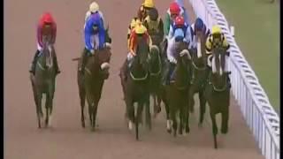 Sponsored horse Cat Royale wins at Wolverhampton