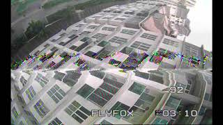 CoviD19 Lockdown and FPV