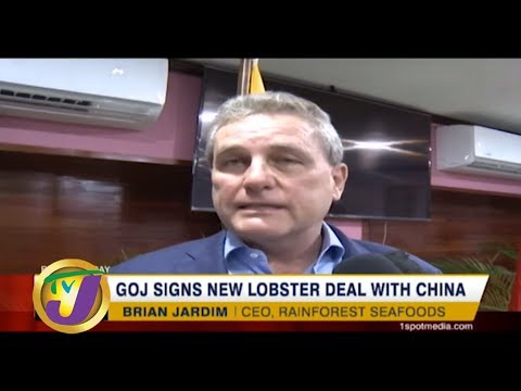 TVJ Business Day: GOJ Signs New Lobster Deal with China - September 19 2019