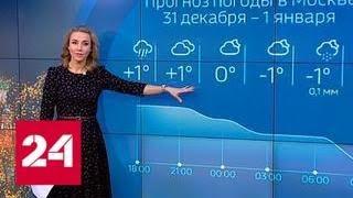 """""""Погода 24"""": в Европейской России глобальное потепление - Россия 24"""