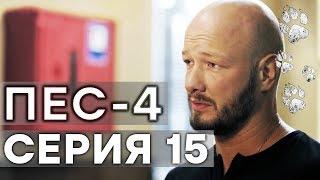 Сериал ПЕС - 4 сезон - 15 серия - ВСЕ СЕРИИ смотреть онлайн | СЕРИАЛЫ ICTV