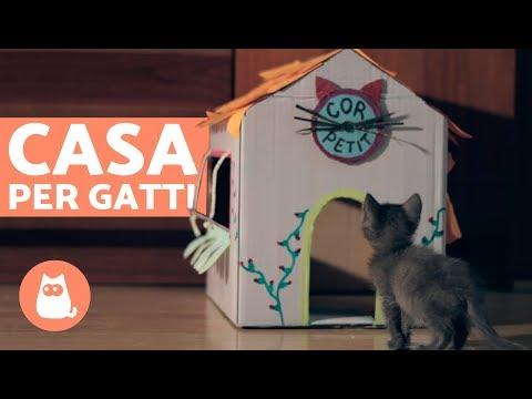 Casa per gatti in CARTONE fai da te 🏠🐱 Come costruire una casa per gatti!