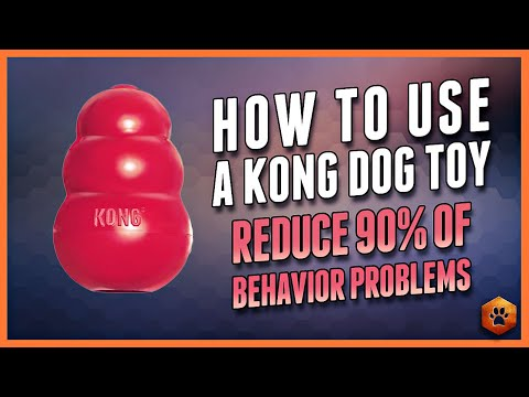How to Use a Kong Dog Toy - 90% of Behavior Problems Eliminated