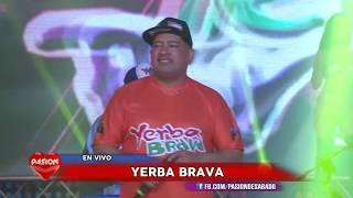 La Cumbia de los trapos - Pibe cantina - Yerba Brava en Pasion