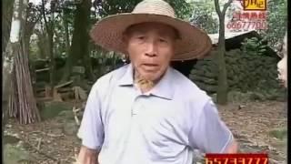 """《寻情记》追逃骗财骗情的""""亲密爱人"""""""