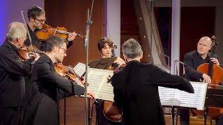 Gil Shaham | Mozart: Sinfonia concertante Es-Dur KV 364 (320d) | SWR Classic