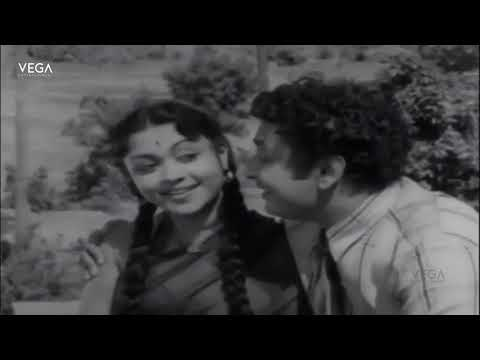 Manamulla Marutharam Tamil Movie | Full Video Song | Vega Tamil Movies