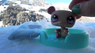 LPS: My Winter Vacation Vlog :)