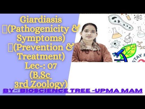 Endoparaziták és ektoparaziták