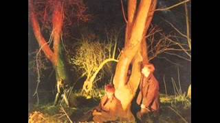 Echo and the Bunnymen---Rescue