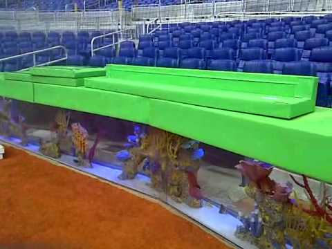 why would they put a fish tank aquarium home plate at marlins park yahoo answers
