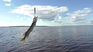 Рыбалка на озере воже