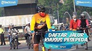 Daftar Jalur Pesepeda di DKI Jakarta, Ada 29 Rute yang Bisa Dilalui
