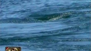 24 Oras: Whirlpool sa Surigao
