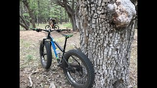 A must visit. You could spend several days here and ride different singletrack each time. With more trails being built regularly. Nice designated camping areas and clean restrooms. Help support the cause, only 5 dollars a day